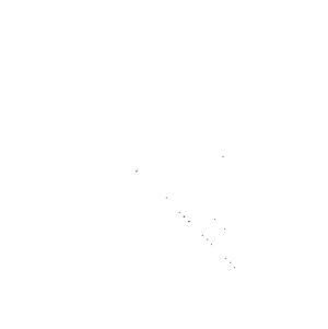 Radiaatorid